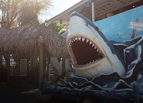 Tarpon Springs Captain Jacks Waterfrount Bar and Grill